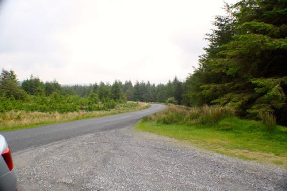 sally-gap-road